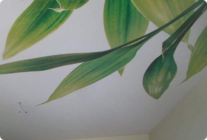 Тканевый натяжной потолок с фотопечатью.