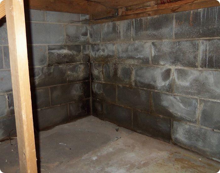 Глубокое проникновение влаги в структуру стен.