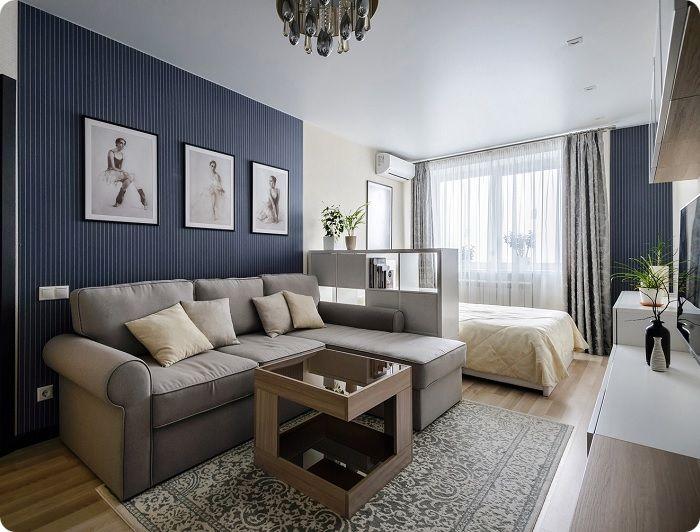 Прямоугольная гостиная со спальной зоной.